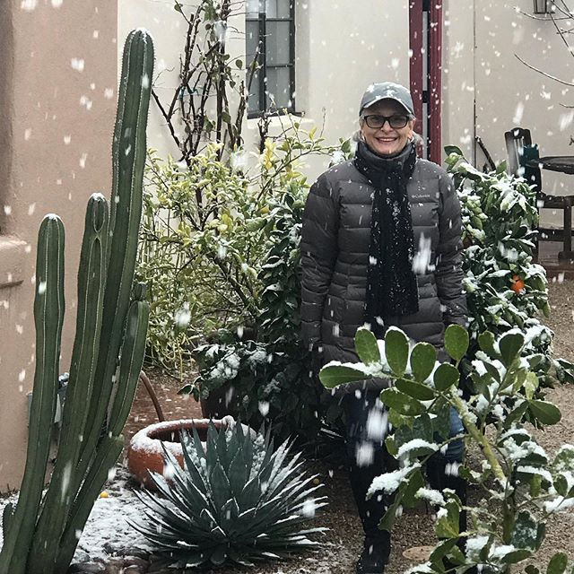 This is s very unusual winter day in Tucson! @lacasacatalina #snow #tucson #winterinthedesert #desert