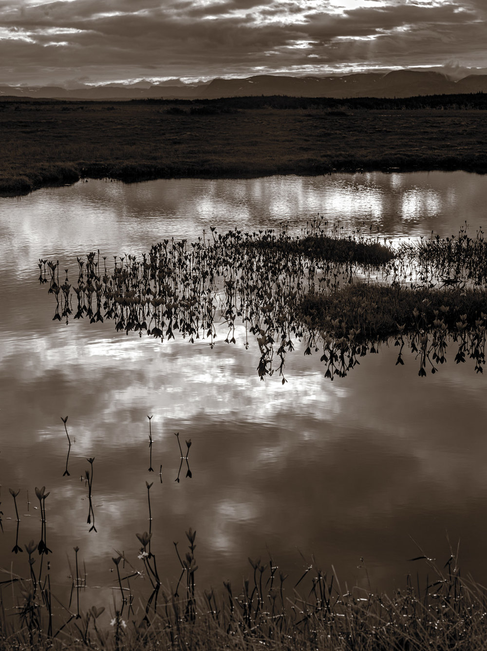 reflections-on-the-merced-1.jpg