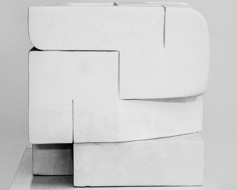 Le Cerveau - Plâtre20 x 20 x 20 cm2014