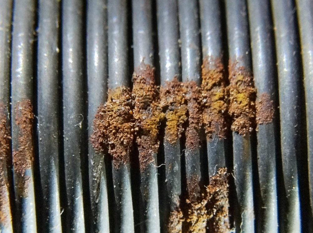 Rust on Baling Wire - iPad Photo