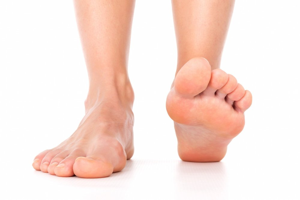The foot and ankle complex consists of 26 bones, 33 joints, and more than 100 muscles, ligaments and tendons! -