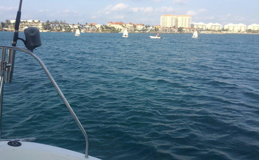 An Opti junior sailing class; their coach blows tacking whistle.