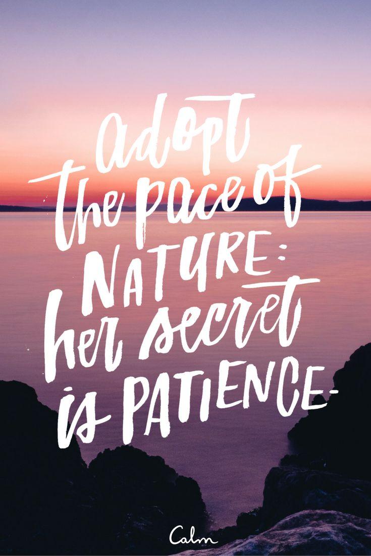 calm nature.jpg