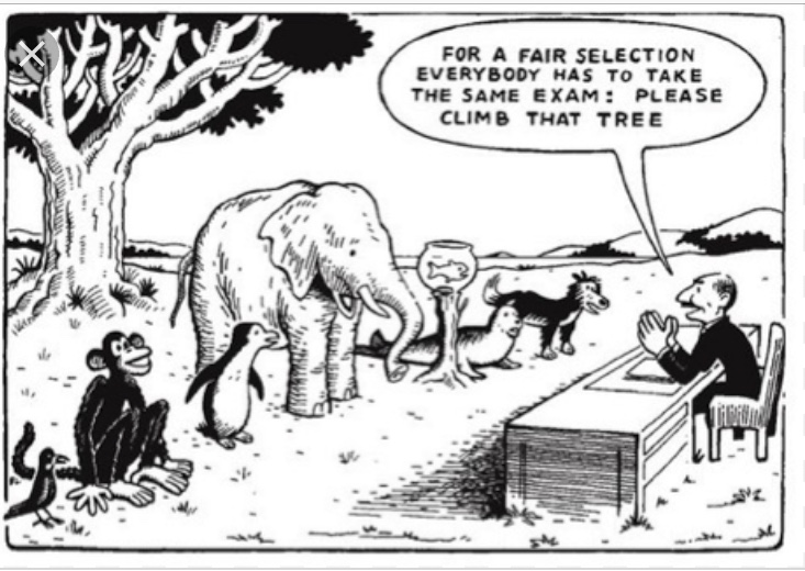 Above is how many educational systems evaluated students. Below is a list and links to how humans judge their own character. I found it interesting how some hold this standard up against the sea and Nature. How and why humans do this can only be the result of their own lack of education, their own ignorannce,arrogance and conceit.