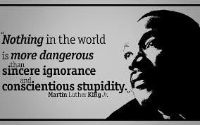 danger of stupidity.jpeg