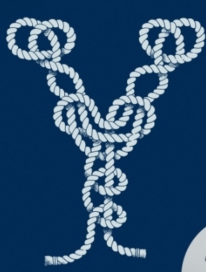 Not really a knot, knots can be designs. A y-knot is a slip knot. a slippery knot. A knot as a necktie? a noose about booth parties!
