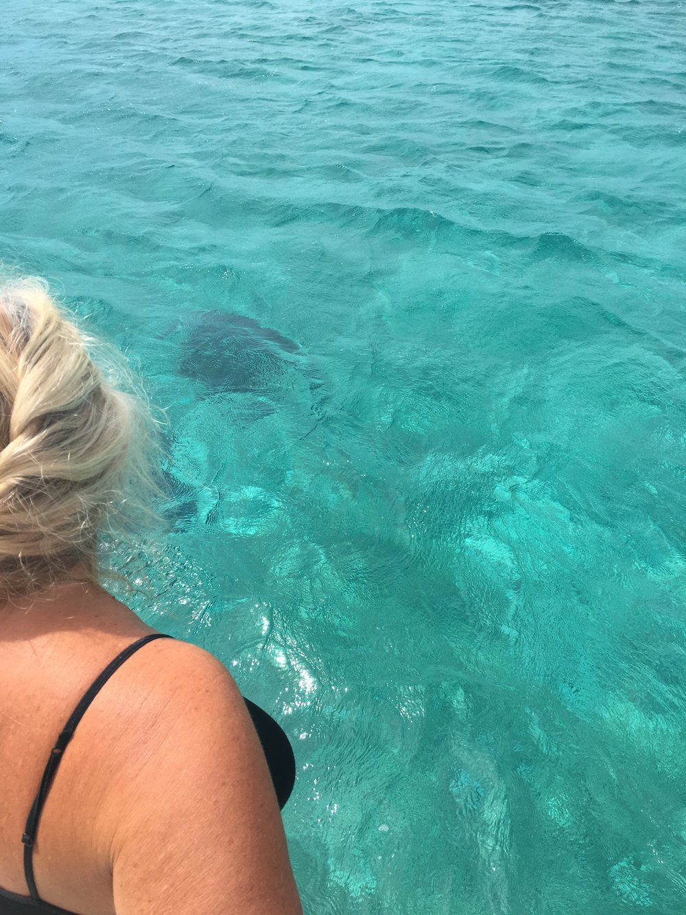 Watching Sting and Ray swim under  Mystique  at Spirit Cay.