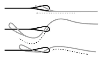 Fishermen use a knot called a Y knot to attach their lure to their line.