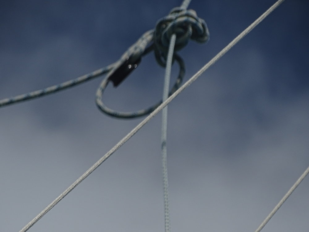 The knot, winch, mast and halyard - all  became metaphors for our relationship. Winching someone close to 60 feet in the air on a windy morning is an act of trust.