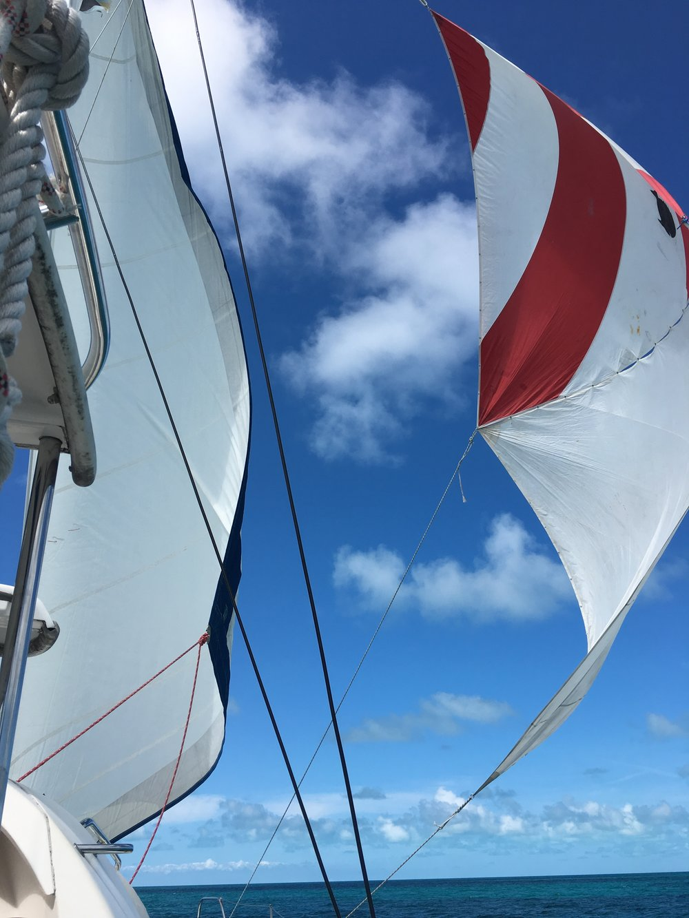 Two sailfish sails = one spinnaker