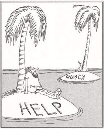 When a duck spells and misspells his English voice, it is funny.When a duck needs rescuing from above, that is also troubling for someone asking and waiting for help from the air on the next island.Just asking for help doesn't mean anyone will understand the message.