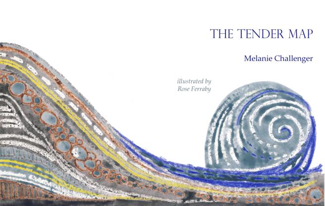 tendermap-3.png