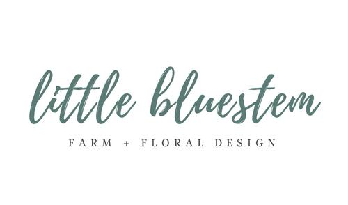 little bluestem (1).jpg