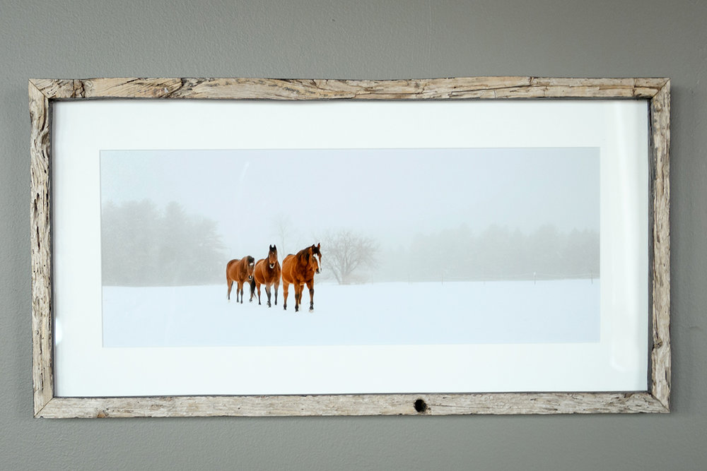 Horses in Winter Fog - Pownal