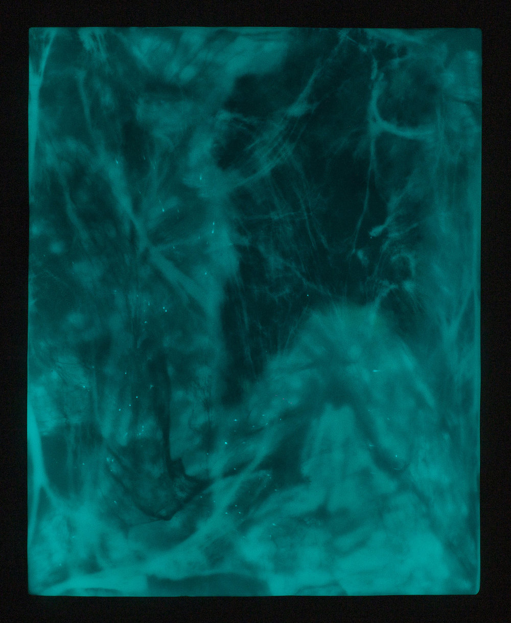 "FLAMING GODS   Phosphorescent pigment, high density foam, acrylic paint, UV  protected epoxy, vanish  48"" x 60"" 2016 Image Credit: Jamahl Richardson"