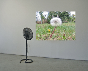 Celeste Fichter  - The Good Fight, 2009, looped video projection, standing fan, dimensions var.