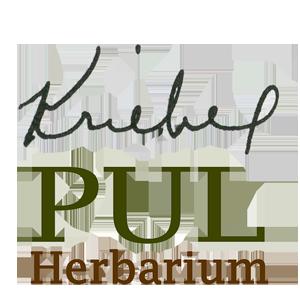 PULlogoB