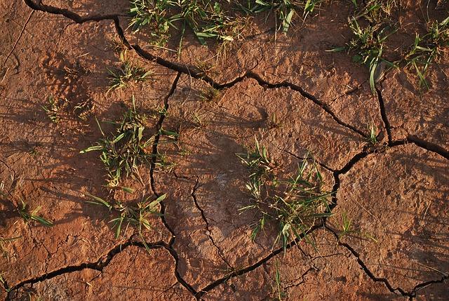 drought-soil.jpg