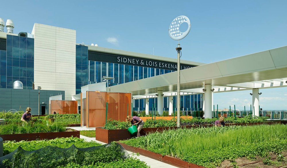 Eskenazi Hospital In Indianapolis Earth Charter Indiana