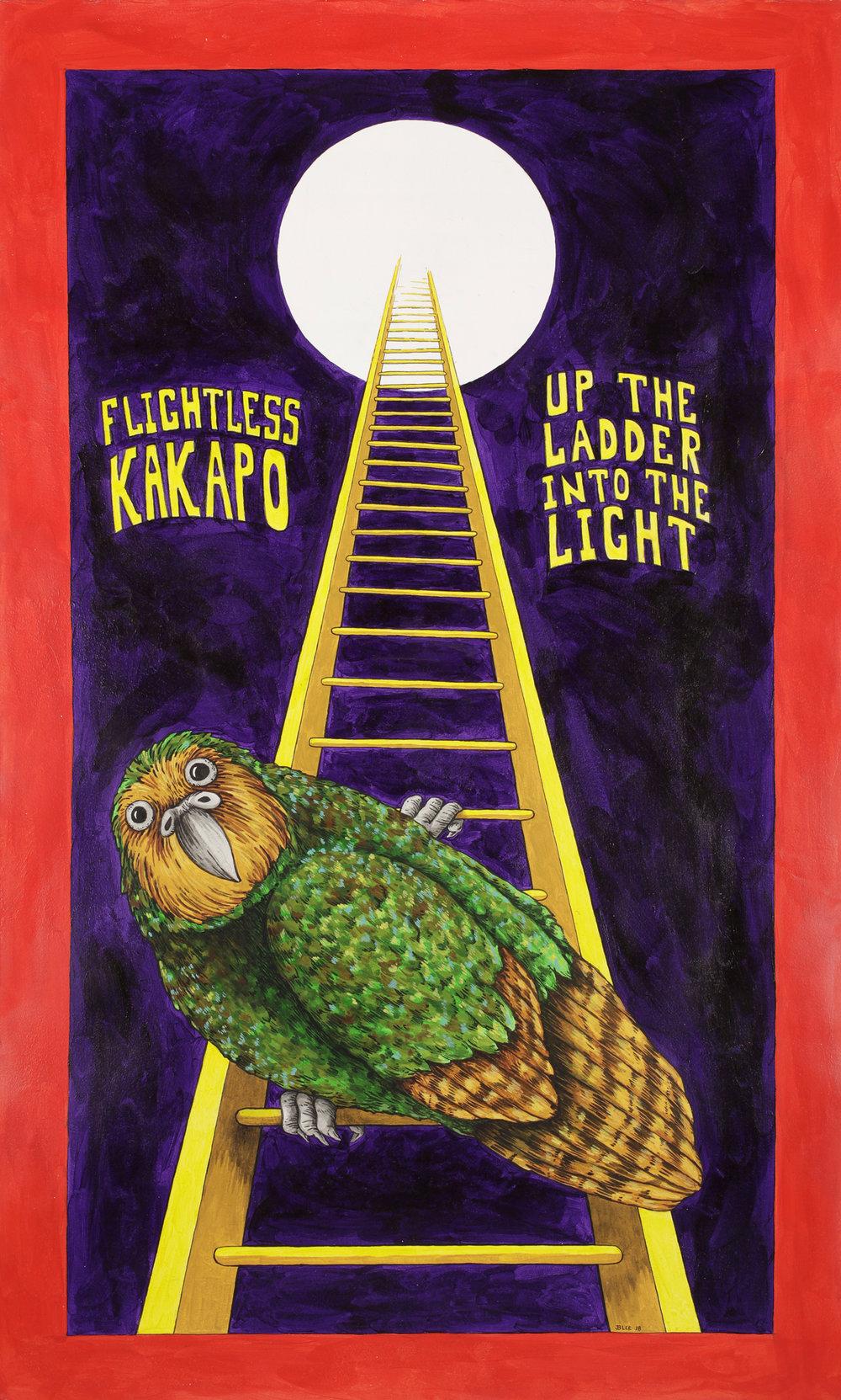 Kakapow.jpg