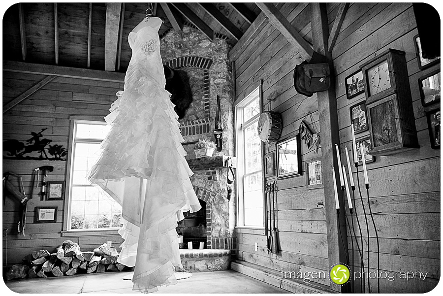 Red Run Bison Farm Wedding Marshallville Ohio, Wedding Dress Shot