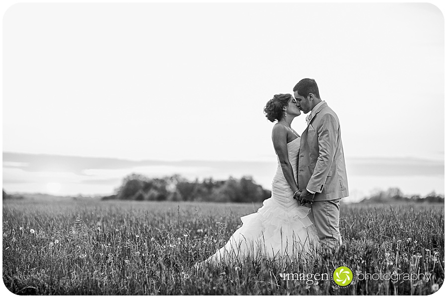 Red Run Bison Farm Wedding Marshallville Ohio, Wedding Photography, Portrait