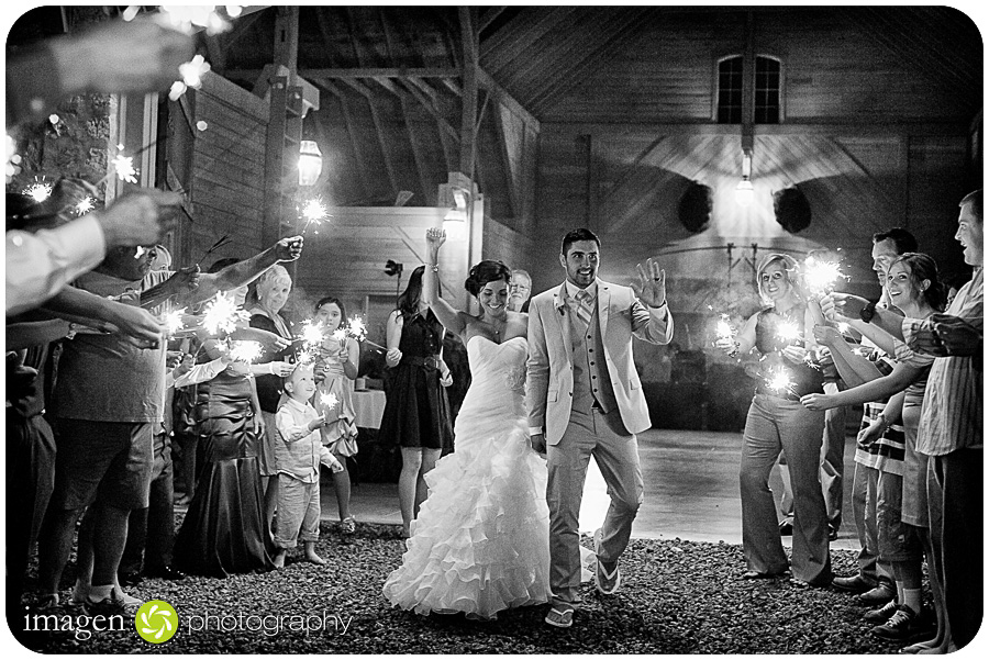 Red Run Bison Farm Wedding Marshallville Ohio, Wedding Photography