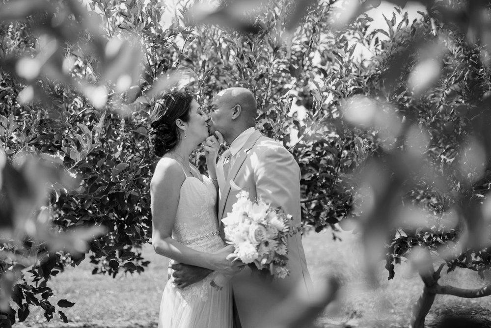 mapleside farm wedding-0040.jpg