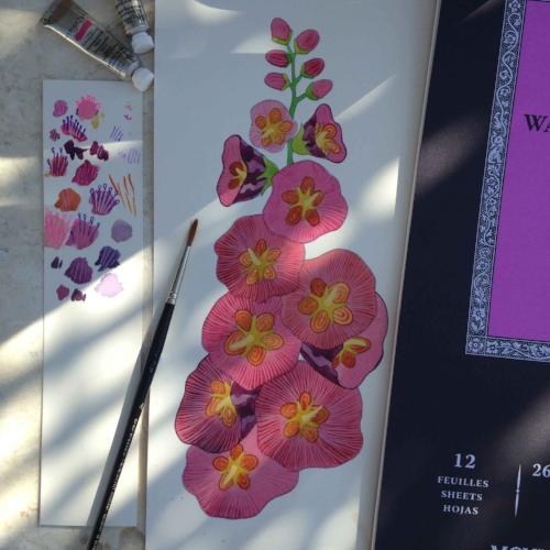 flowers.hollyhock.1
