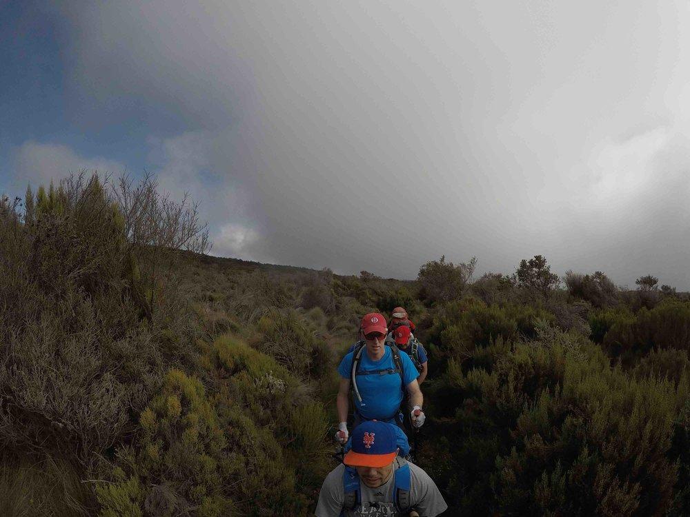 HFHG climbing.jpg