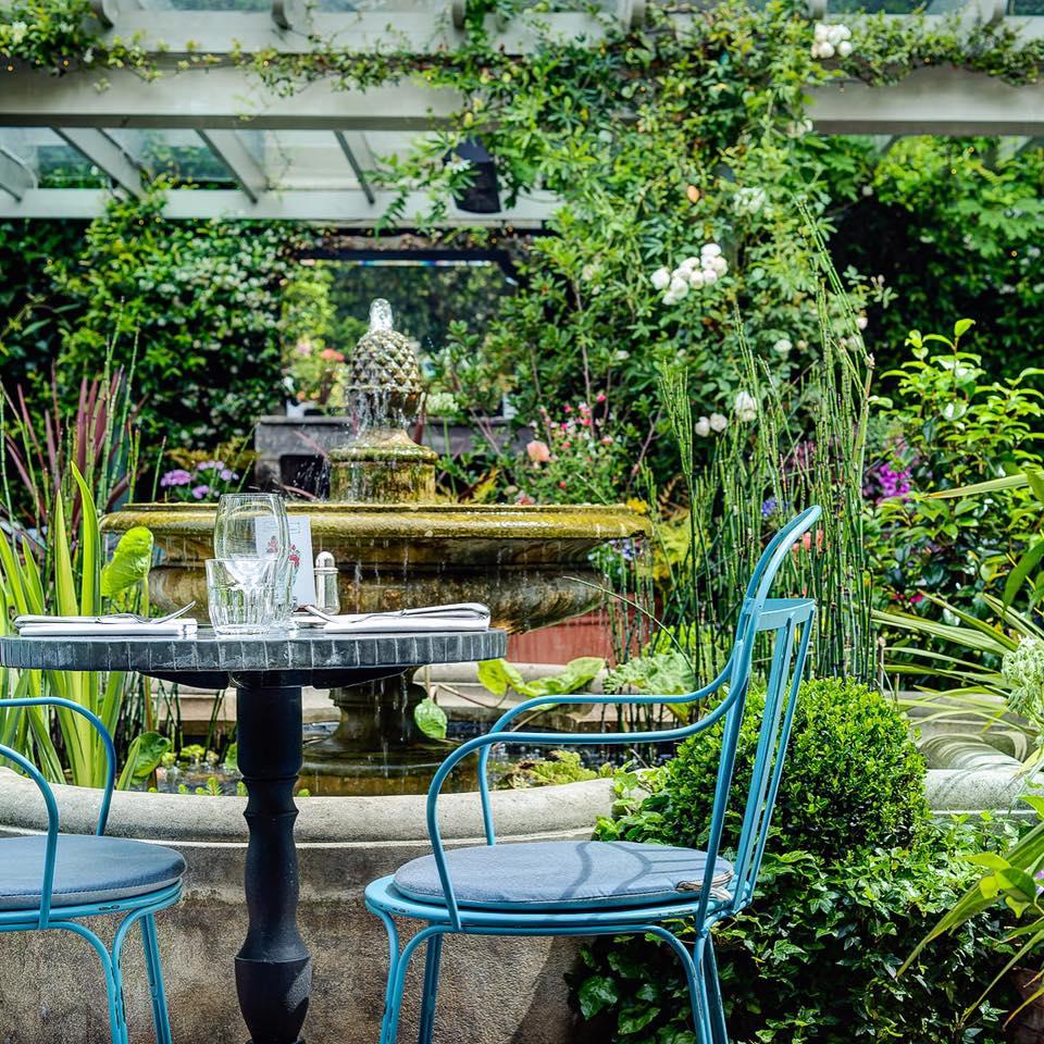 Chelsea Ivy Garden