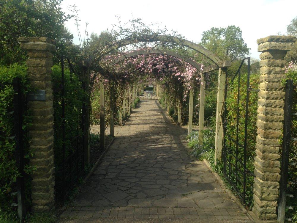 Gardens in Peckham Rye
