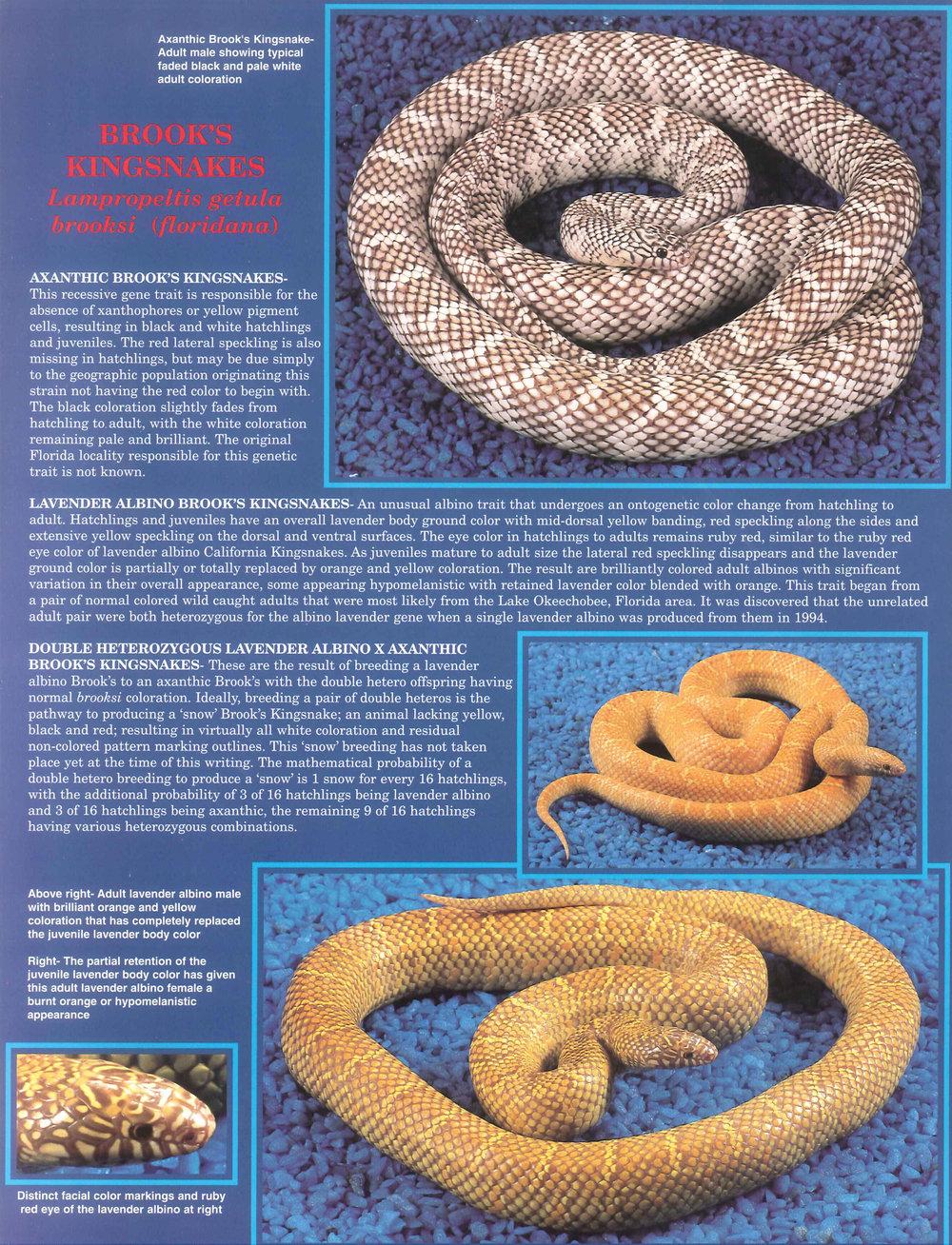 Professional Breeders Brochure_6.jpg