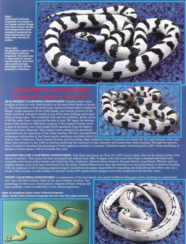 Professional Breeders Brochure_7.jpg