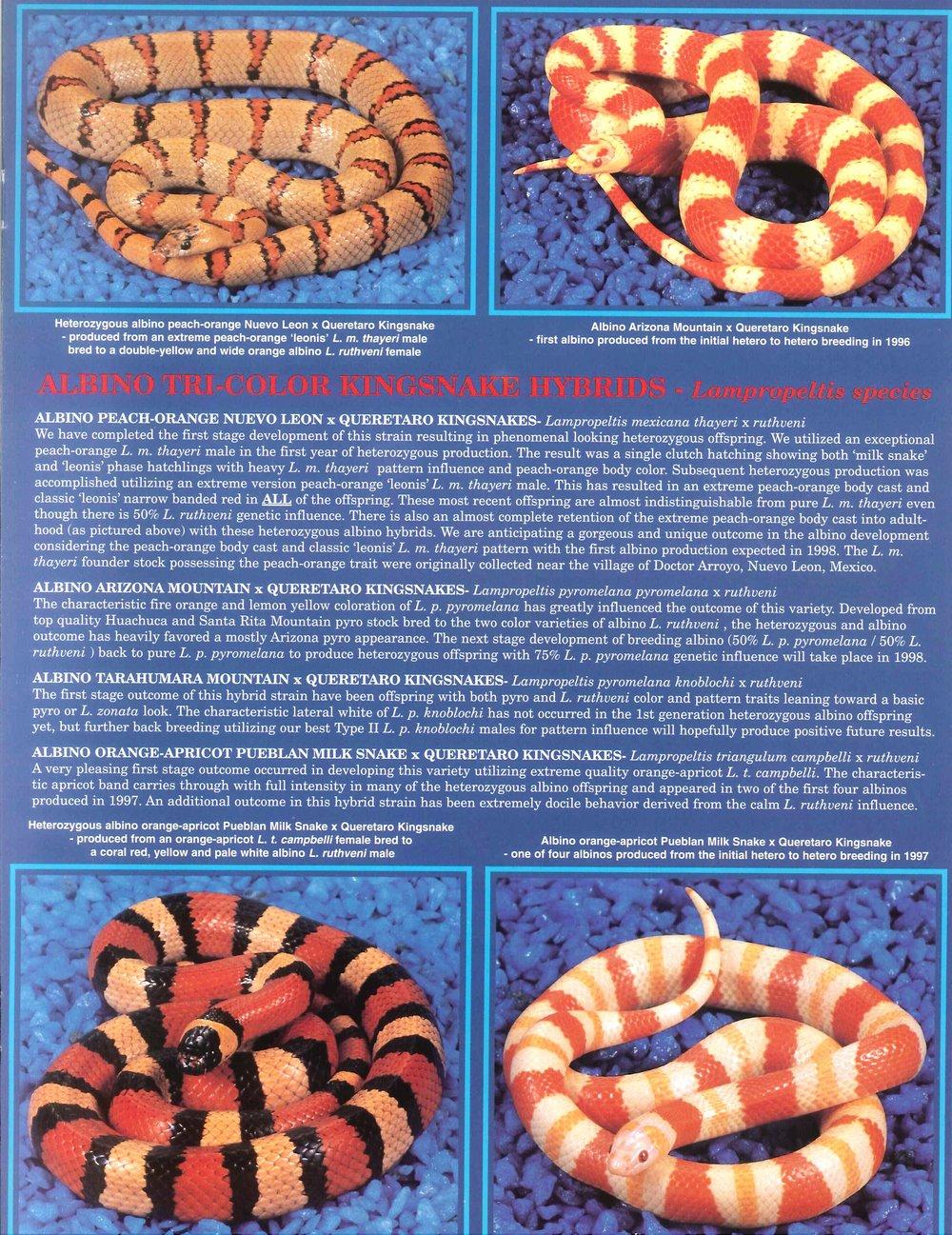 Professional Breeders Brochure_11.jpg
