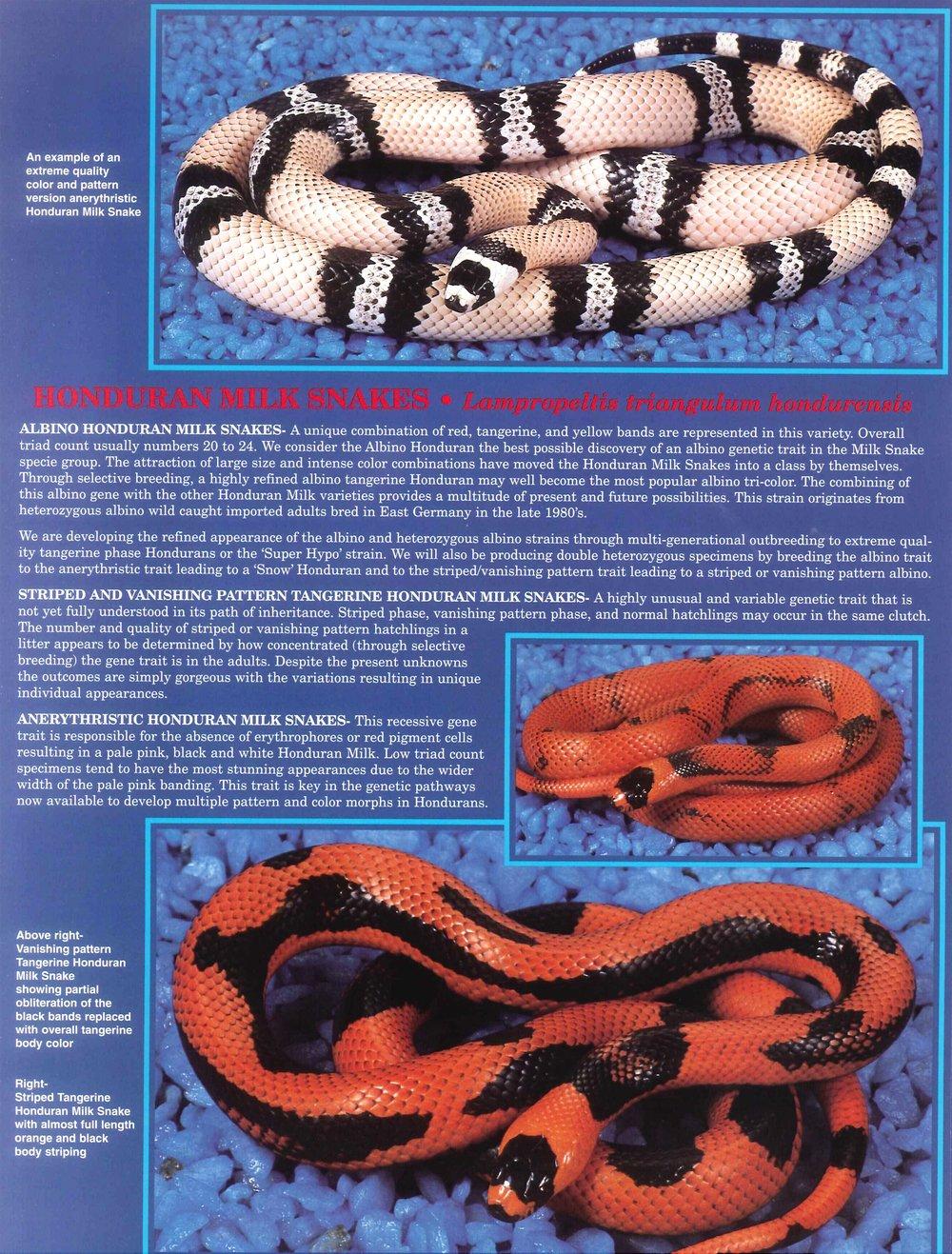 Professional Breeders Brochure_13.jpg