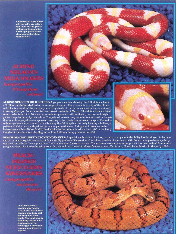 Professional Breeders Brochure_14.jpg