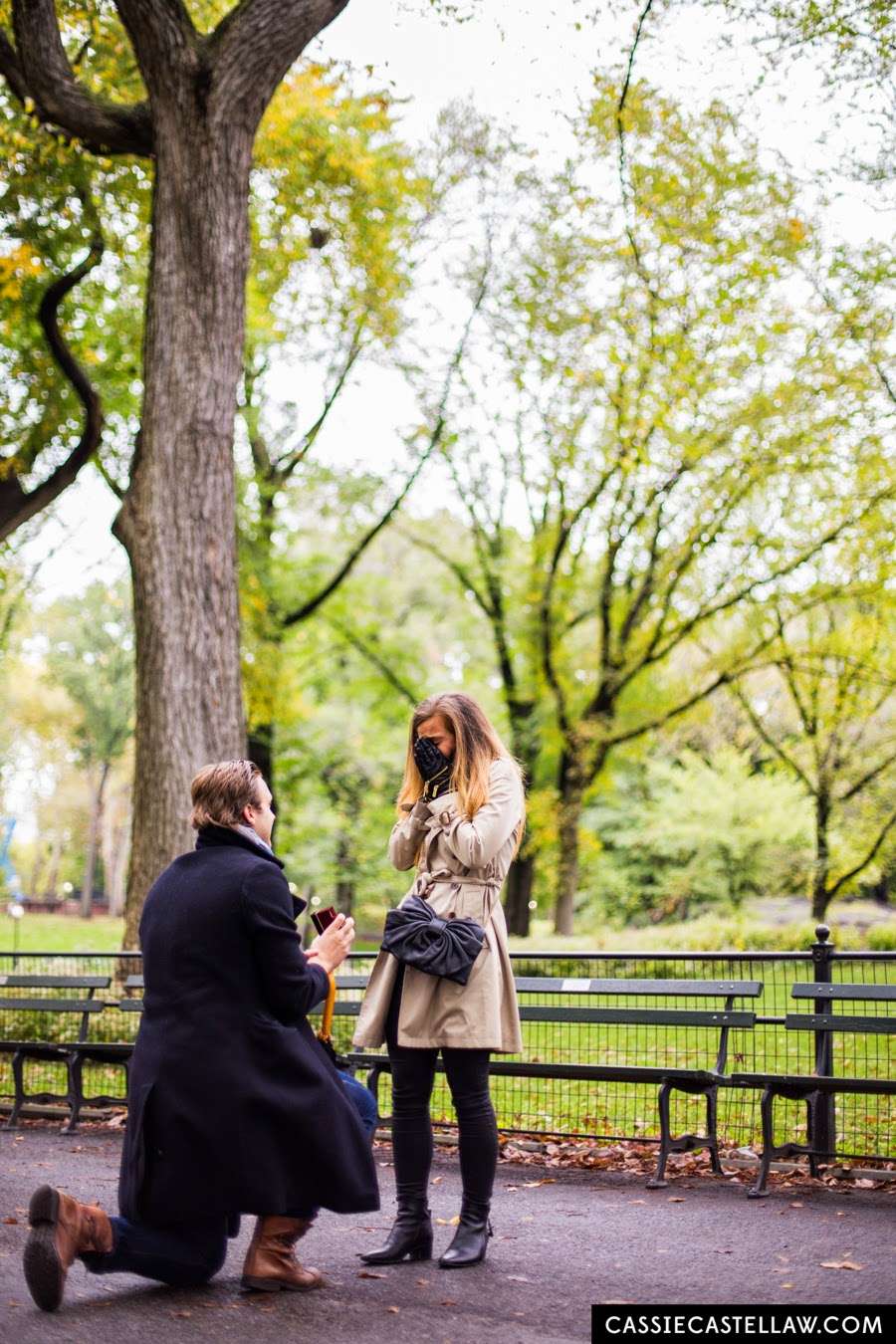 Romantic proposal in The Mall under American Elm trees in Fall, Central Park Lifestyle Engagement Portraits NYC - www.cassiecastellaw.com