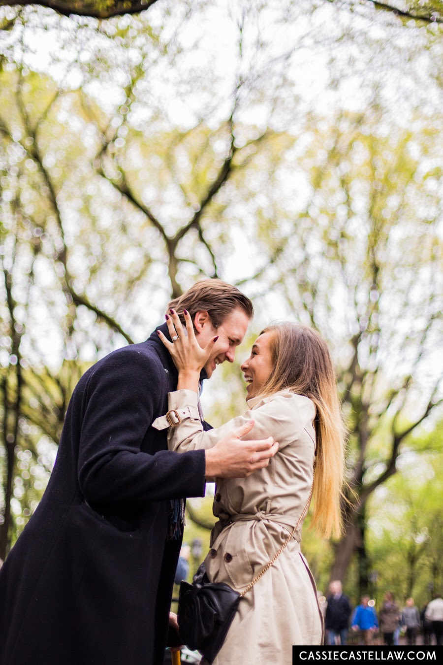 Newly Engaged, romantic destination proposal in Central Park under American Elm trees of The Mall - www.cassiecastellaw.com