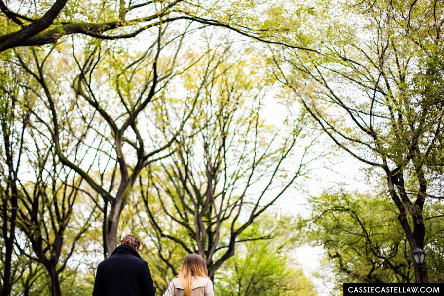 Surprise proposal in the fall under American Elm Trees at The Mall Central Park - www.cassiecastellaw.com