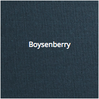 Coated_Boysenberry.png
