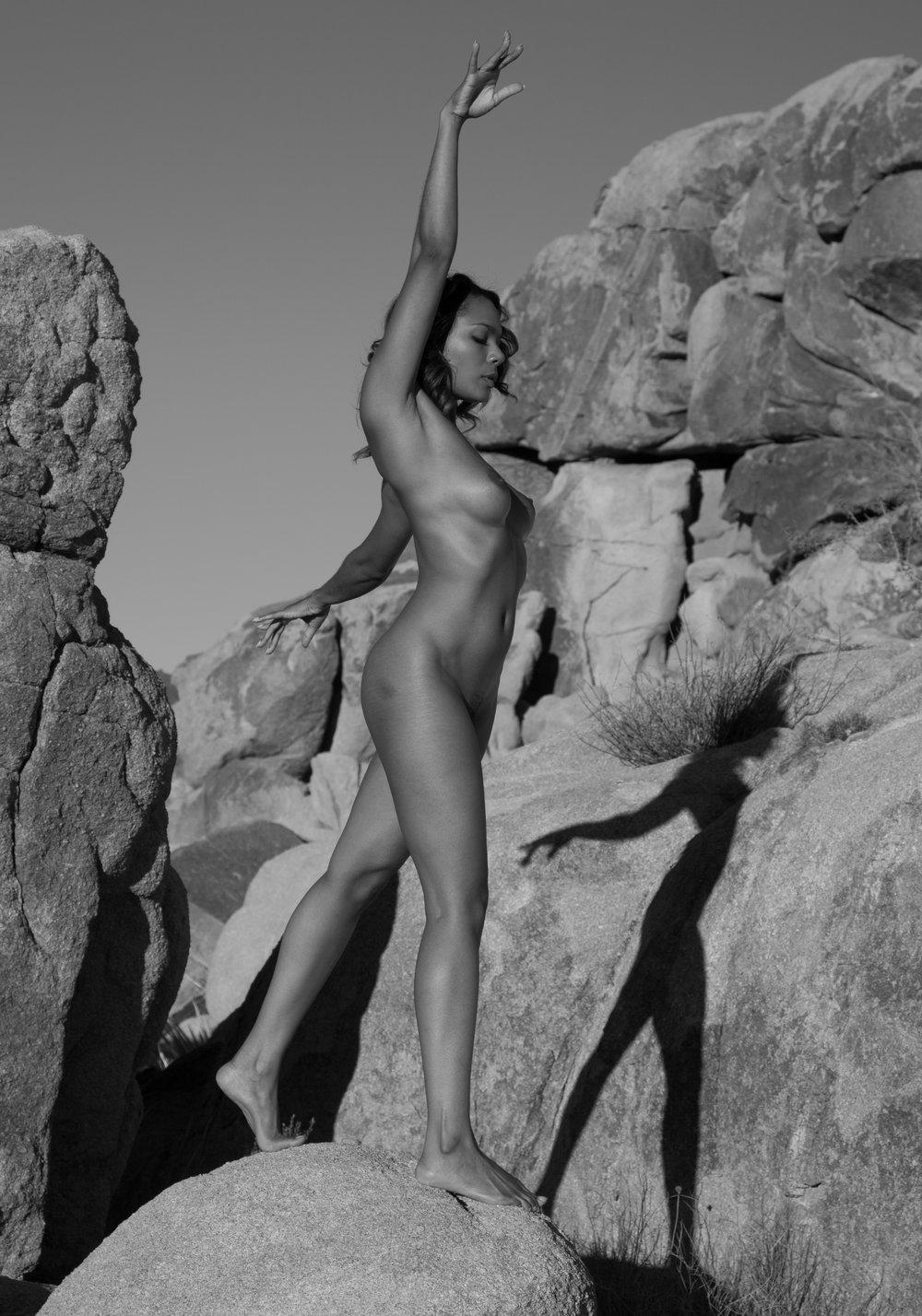 Merrique on the rock.jpg