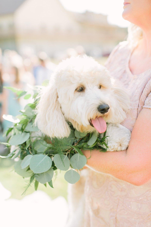 wedding_291 (1).jpg
