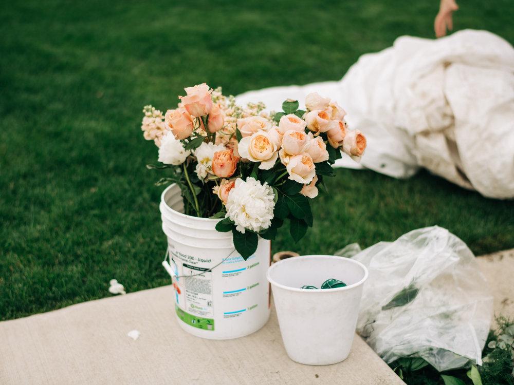 Wedding-0220.jpg