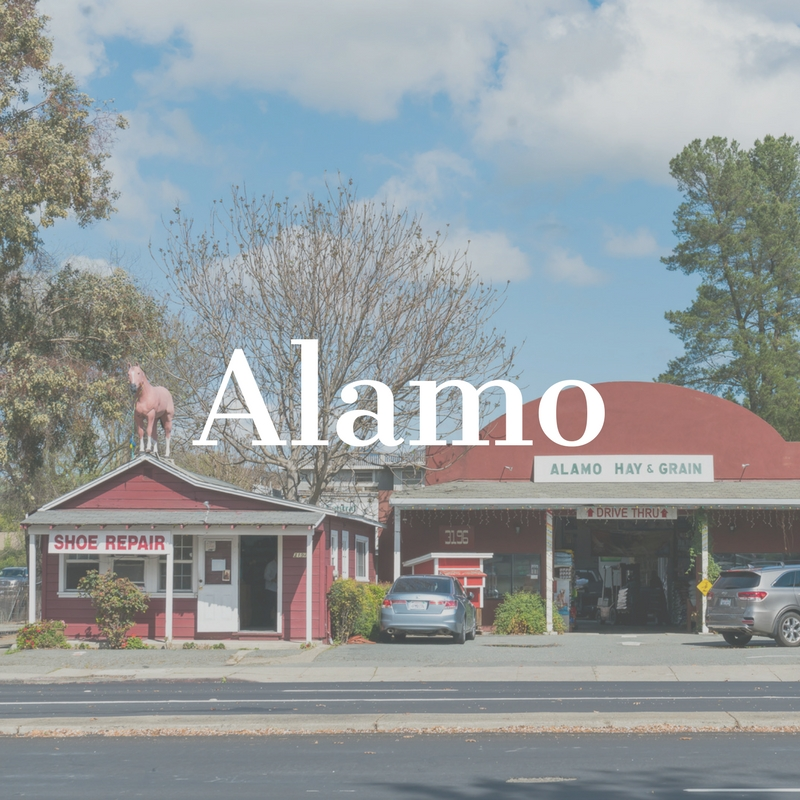 Copy of Alamo