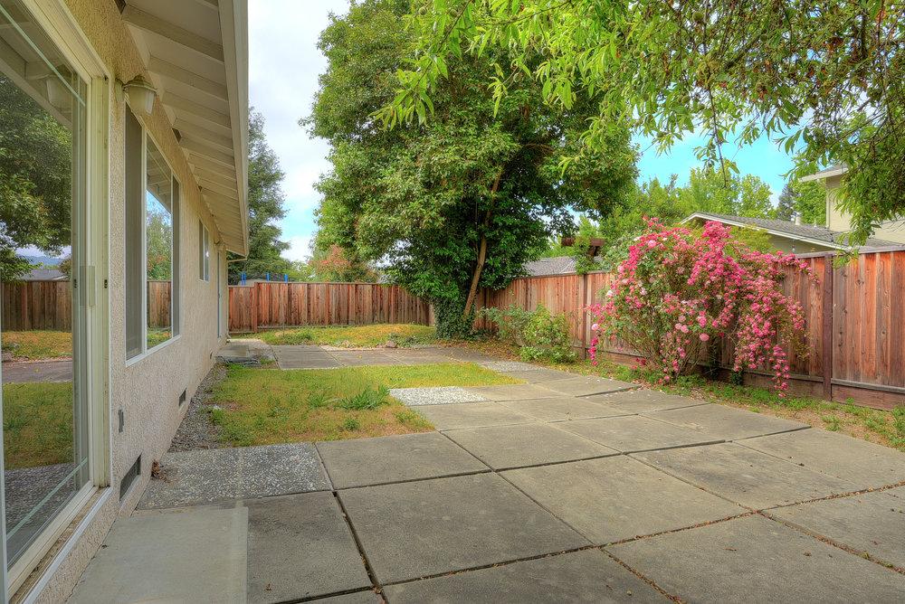 Backyard_1.jpg