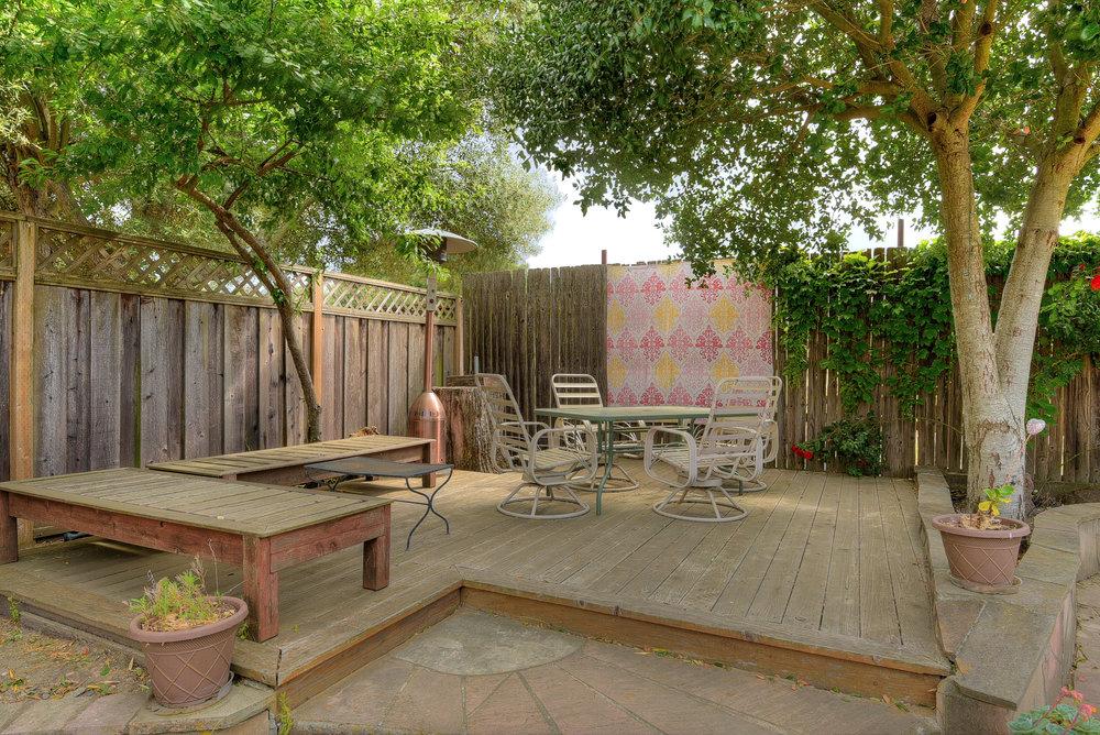 Backyard_5.jpg