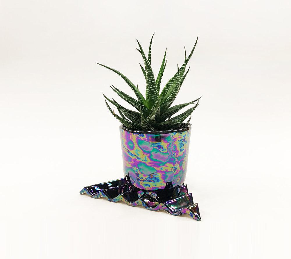 Acute planter_06.jpg