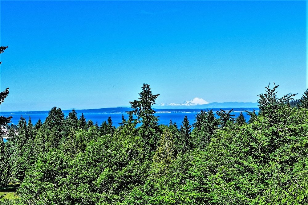 mountain, view, port ludlow property