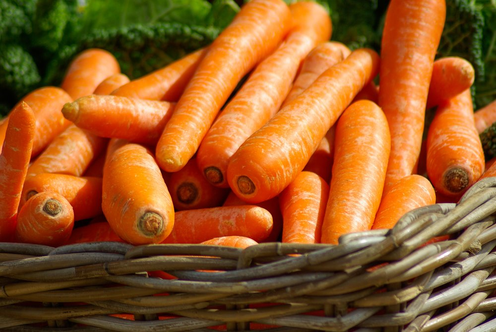 Local Food & Farmers Markets - Just 10 minutes from Port Ludlow, is historic farming town of Chimacum. Grocery shop at the farmers market and organic farm stands.